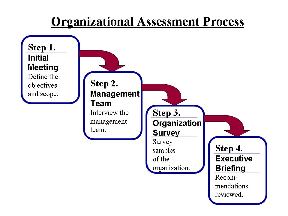 Organizational Assessment Process